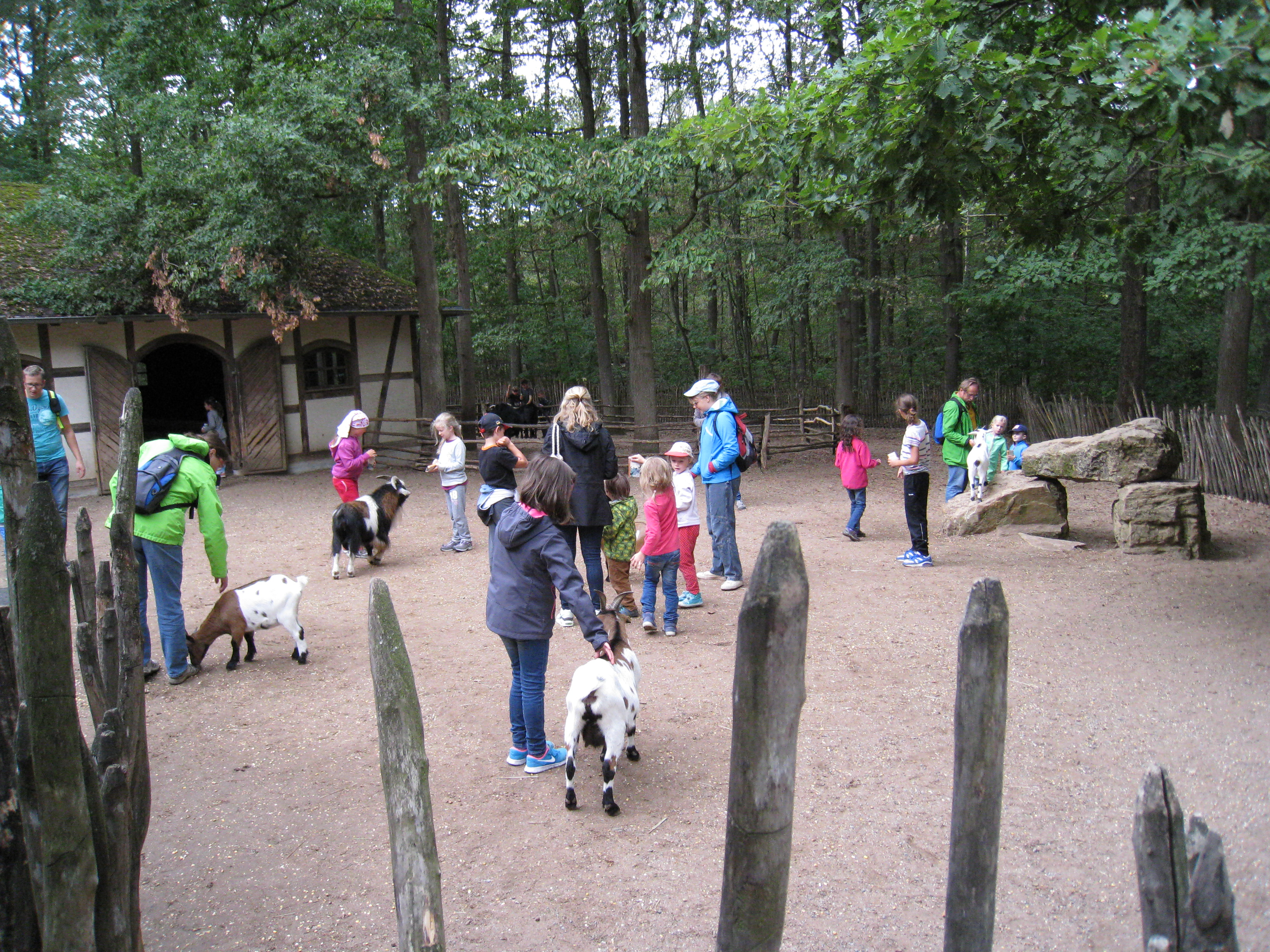 Wildparkbesuch - Bad Mergentheim(100)