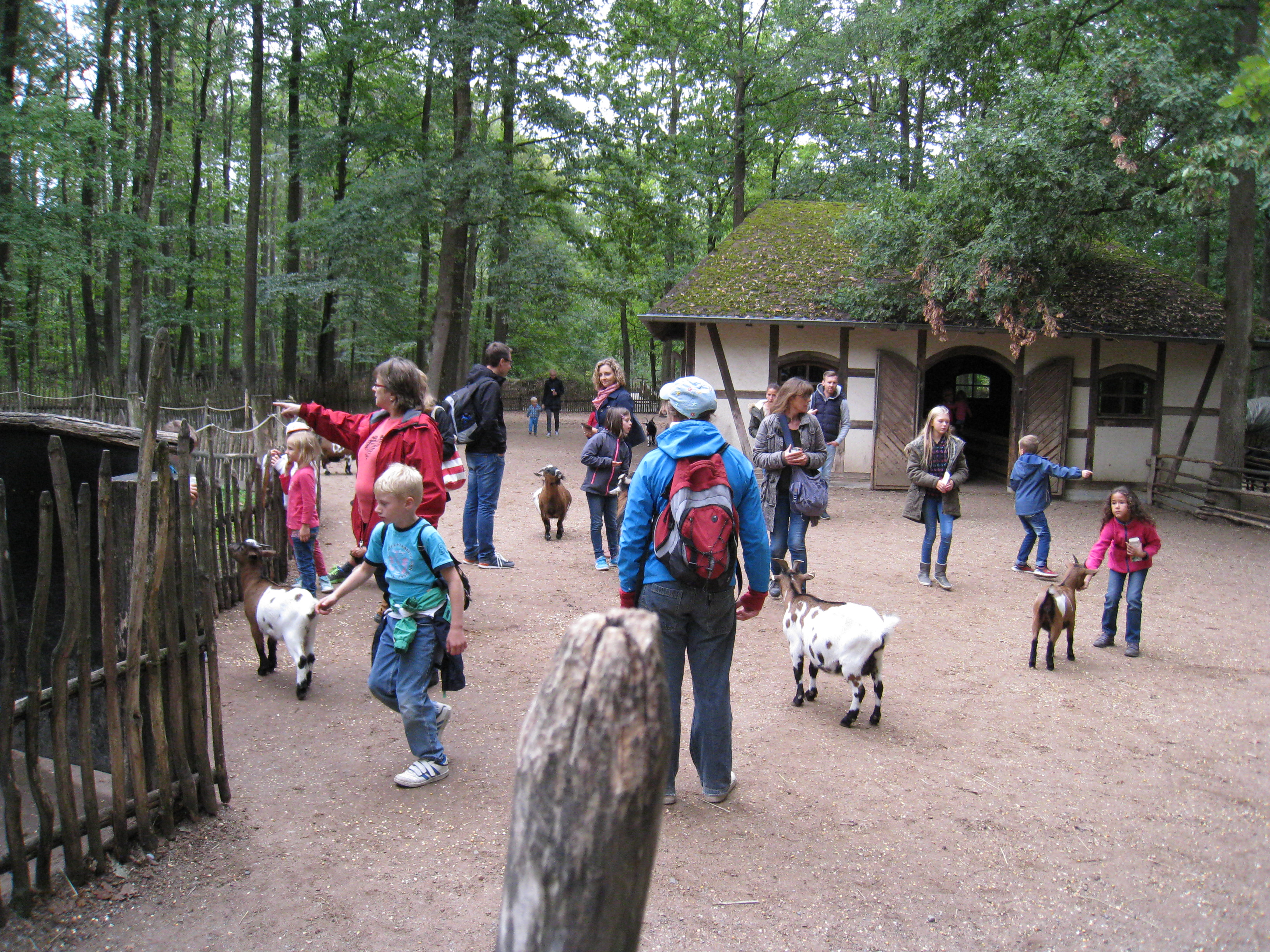 Wildparkbesuch - Bad Mergentheim(101)