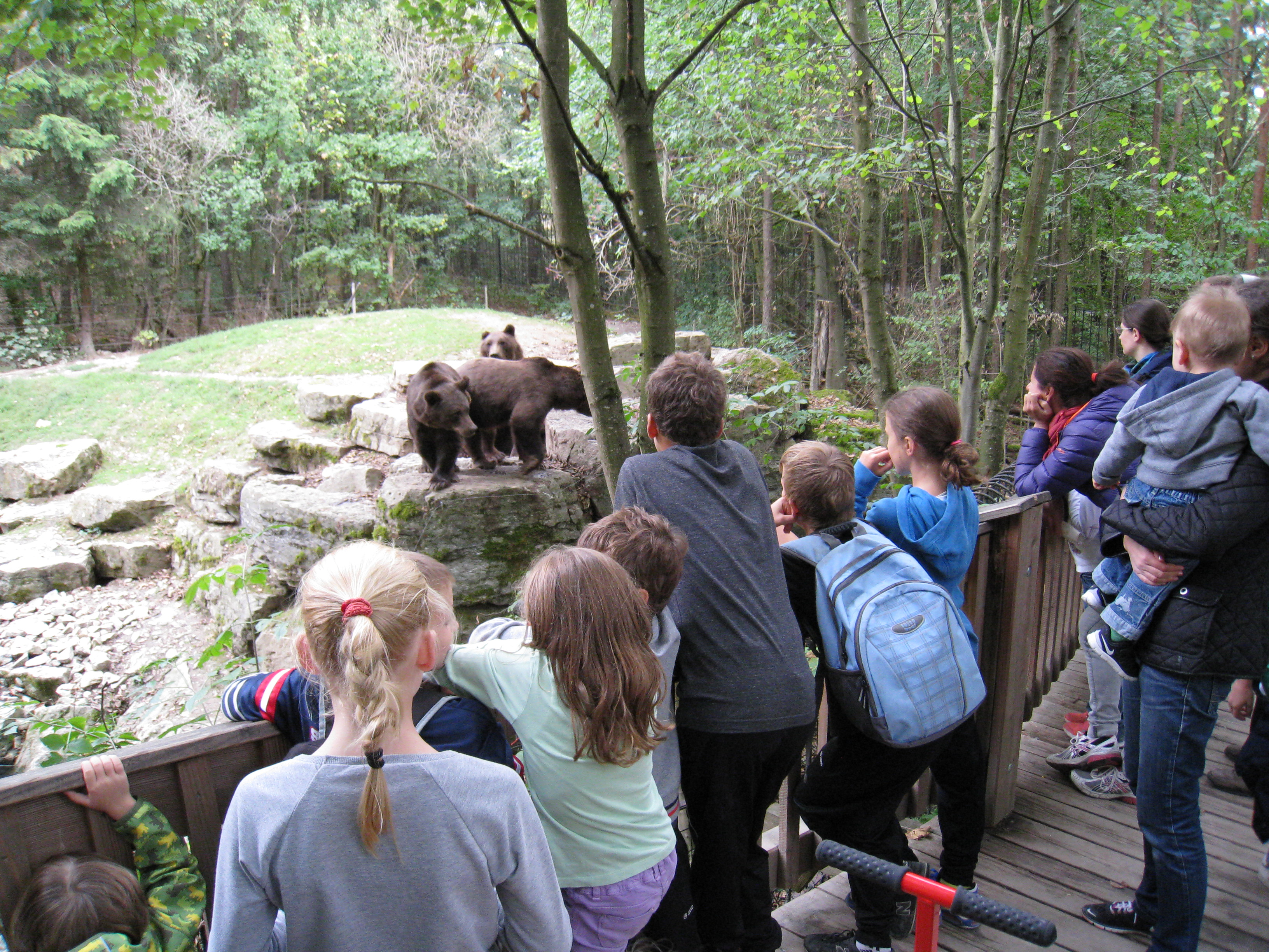 Wildparkbesuch - Bad Mergentheim(103)